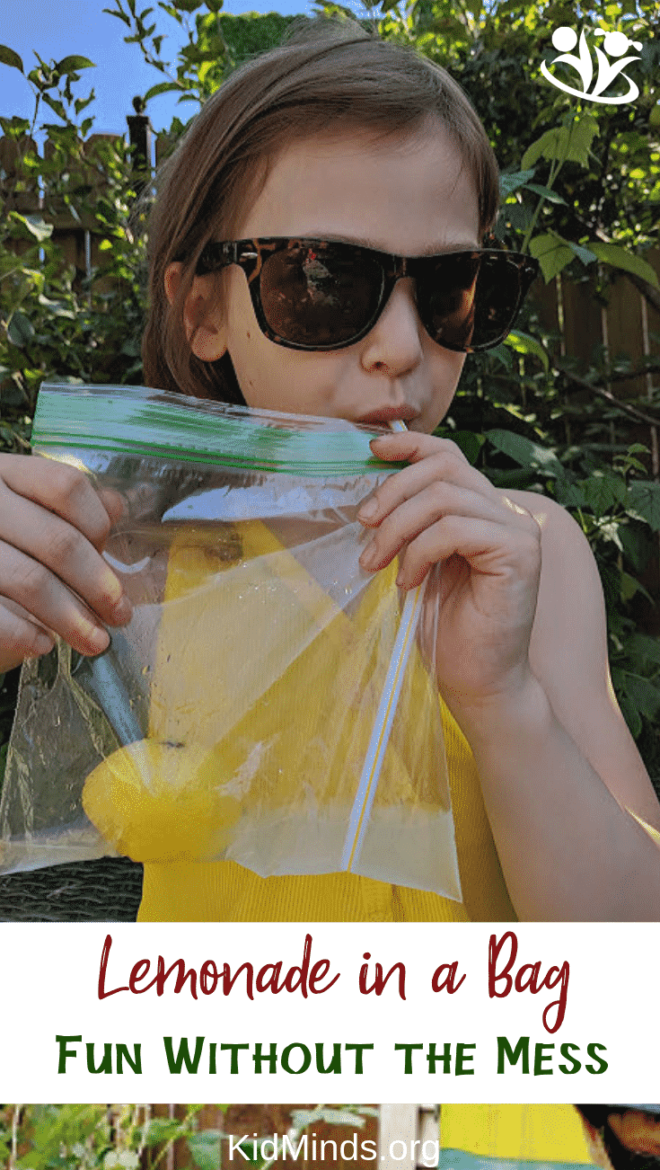 Is homemade lemonade on your summer bucket list? We have a suggestion that simplifies the process, minimizes the mess, and wows the kids - lemonade in a bag. #summer #lemonadeinabag #kidscancook #formoms #summerfun #kidsactivities