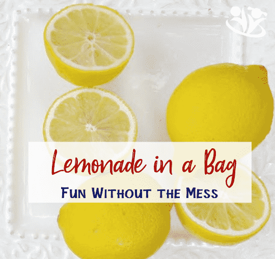 Lemonade in a bag in 5 minutes
