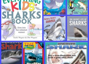 Best Shark Books for Little Shark Enthusiasts