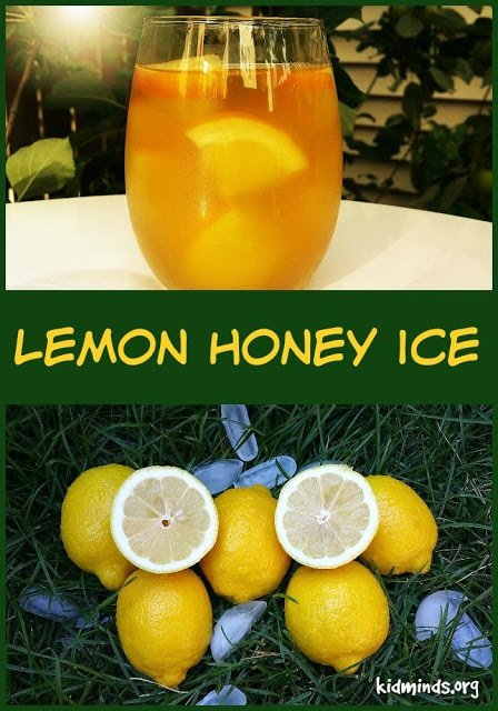 Lemon Honey Ice