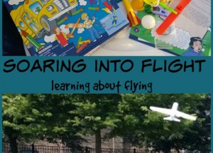 Soaring Into Flight (science class at home)