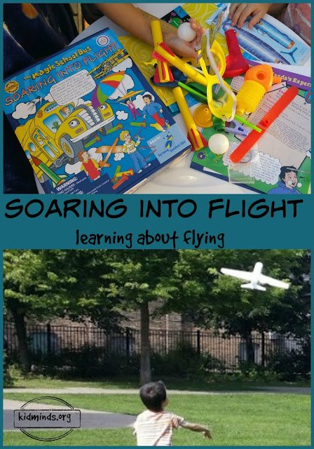 Science at home // Every time my kids stumble upon a topic I don't know much anything about (slugs, puke, ghosts, they have diverse interests), I learn about it along with them.  And I always appreciate a good resource to help us on our learning adventure.  Soaring into Flight is a great learning tool.  It might not answer ALL the questions, but it will sure explain a lot.