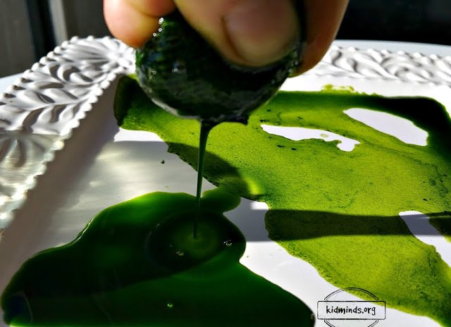 Maple Leaf Science: how to extract chlorophyll and paint a duck