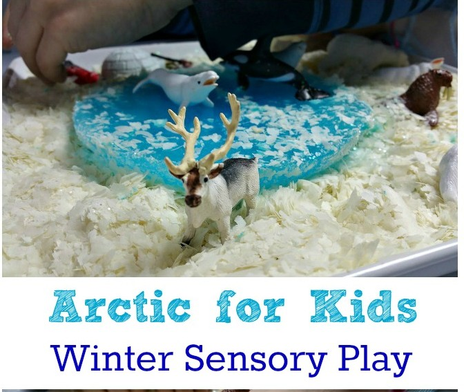 Arctic for Kids - Winter Sensory Play