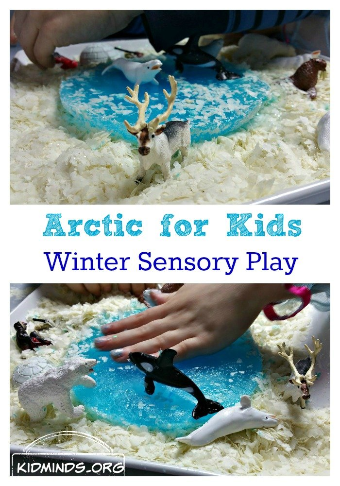 Arctic for Kids is a Winter Sensory Play idea that is fun year round. All you need is a bag of potato flakes, chunk of ice and some arctic animals. If you are brave, add glitter for an exceptionally beautiful glittery snow.