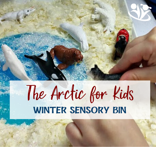 Winter Sensory Bin - The Arctic for Kids