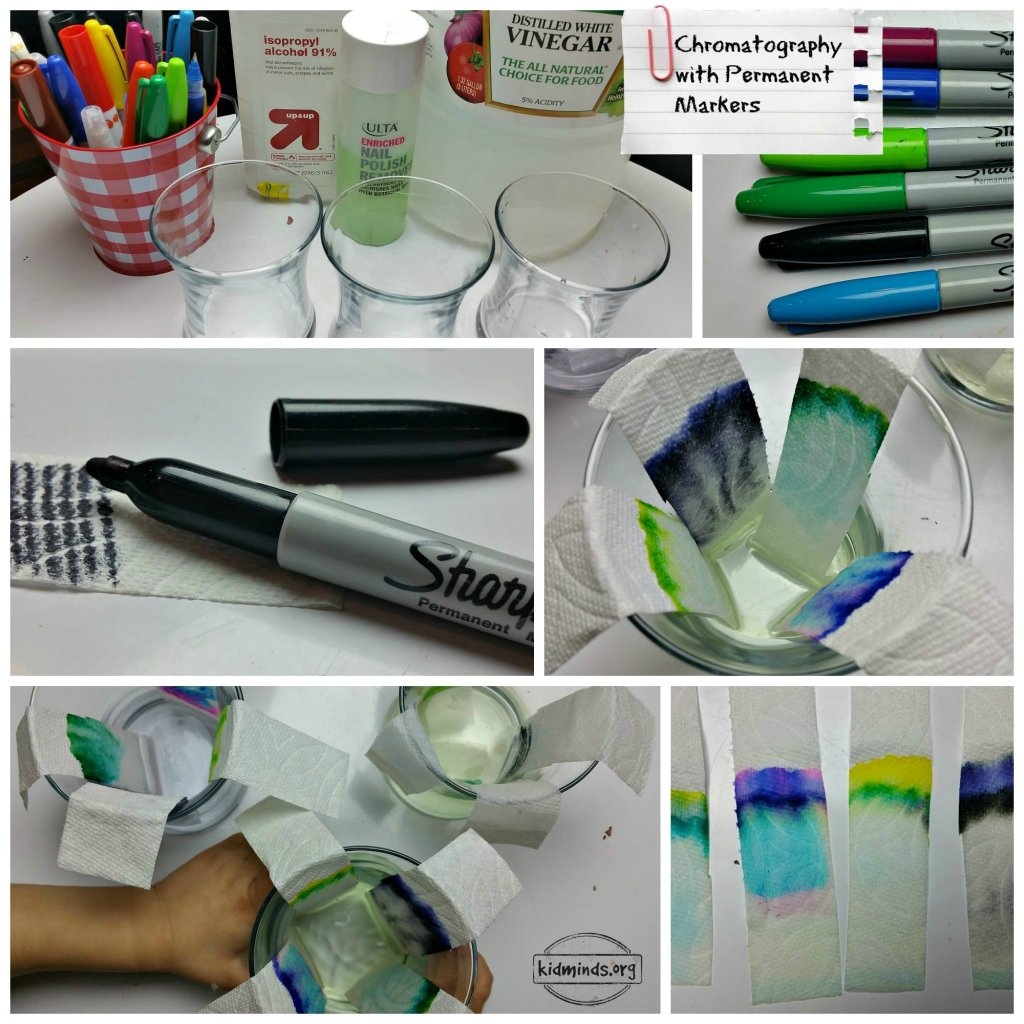 paper chromatography science fair project [pdf]free paper chromatography science fair project download book paper chromatography science fair projectpdf science fair project ideas thu, 29 mar 2018 18:59:00 gmt.