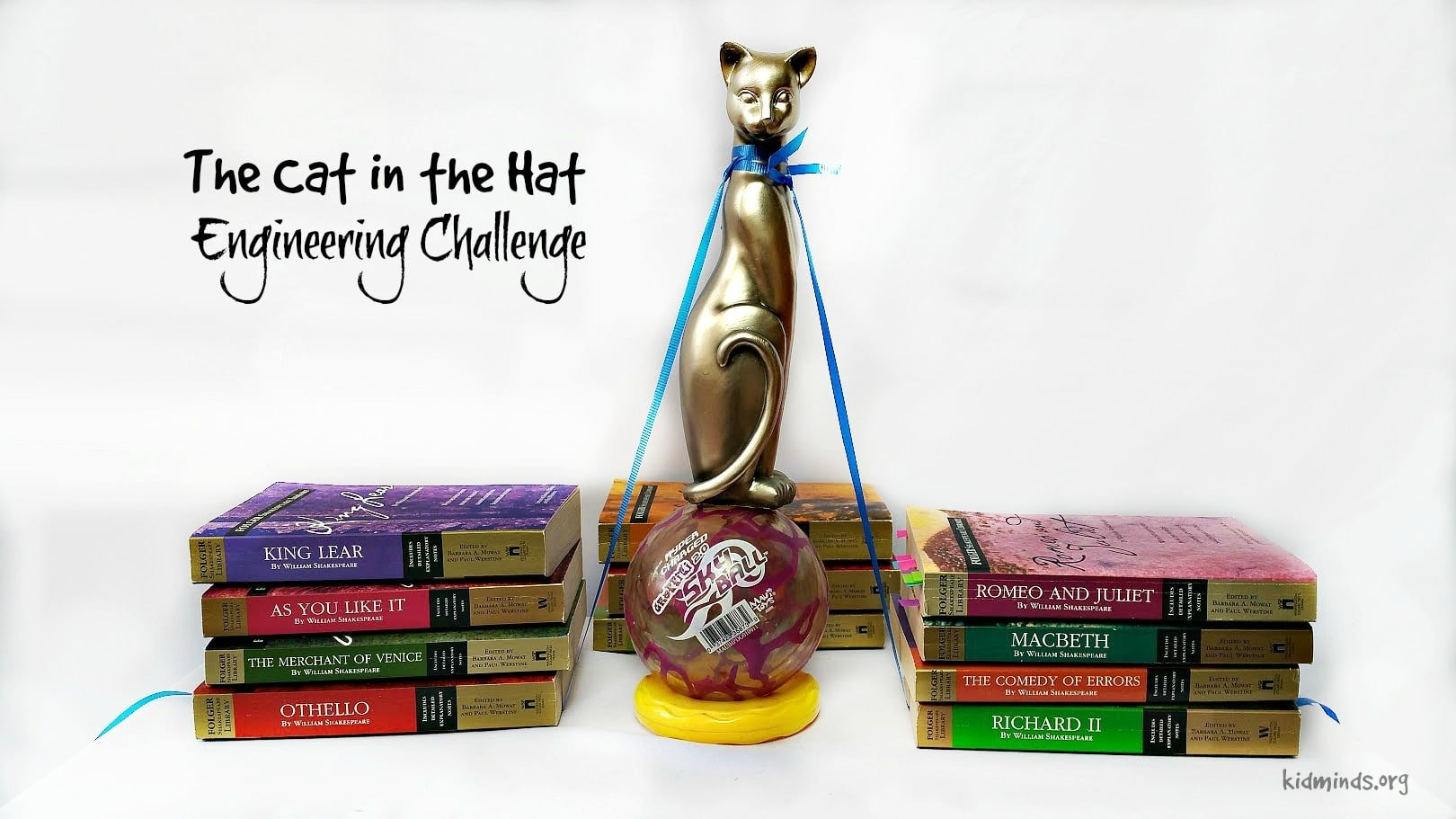The Cat in the Hat Engineering Challenge