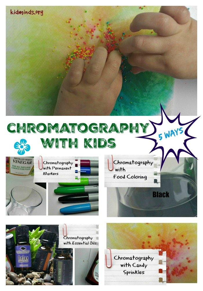 Simple chromatography experiments you can do with kids at home... with food coloring, candy sprinkles, essential oils, and two types of markers. #handsonlearning #chromatography #creativelearningideas