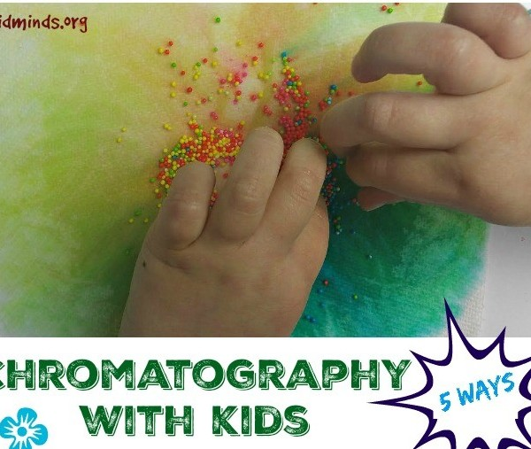 Chromatography Experiments with Kids – 5 ways