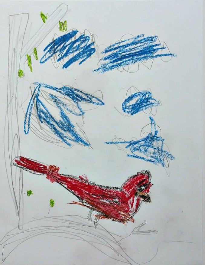 Audubon Inspired Bird Study and Cardinal Drawing Tutorial