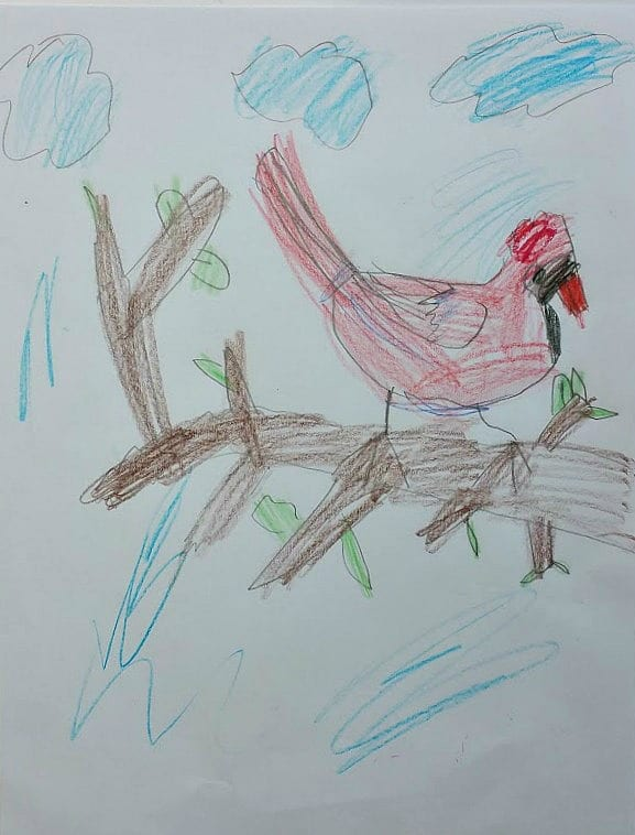 Cardinal by 7 year old, school pencil and crayons