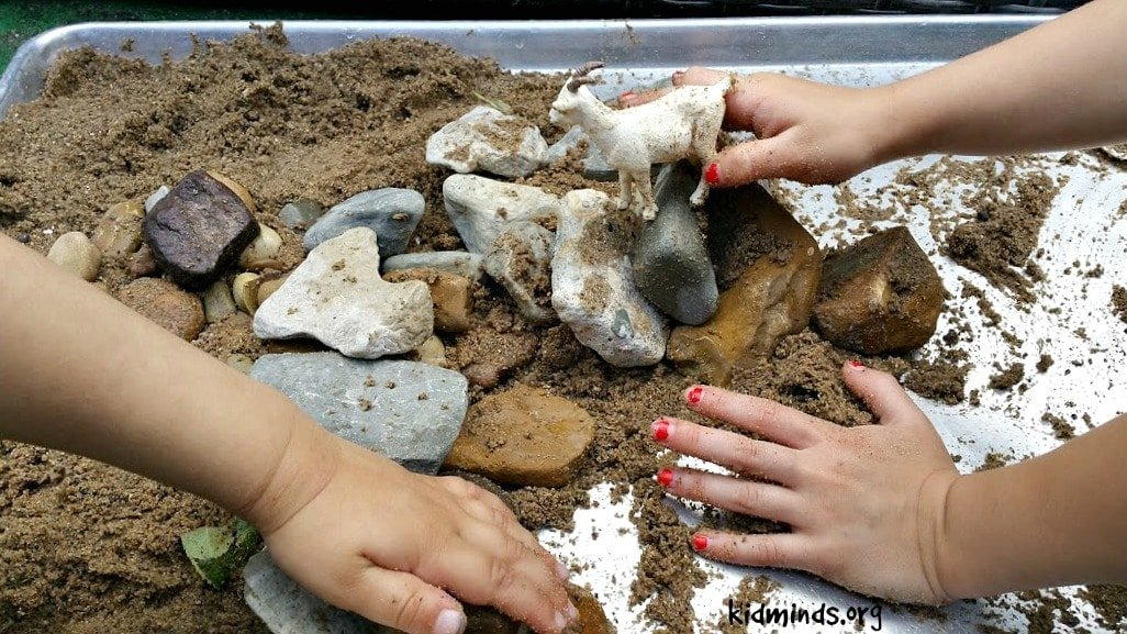 Goat Activity Sensory Play 2