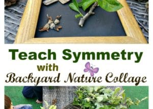 Teach Symmetry with Backyard Nature Collage
