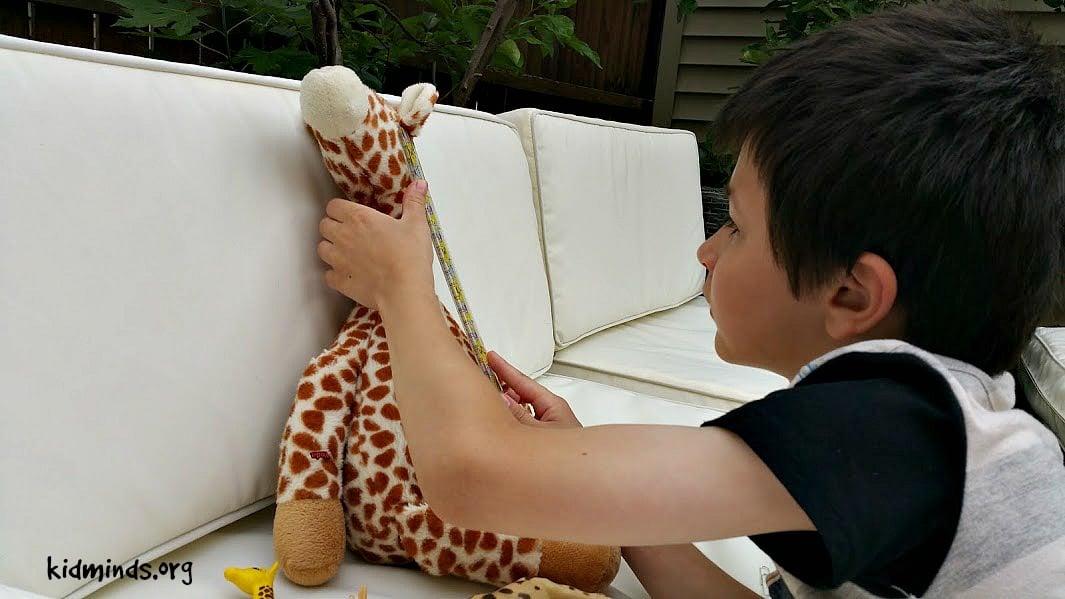 Giraffe Science Math and Measurement3