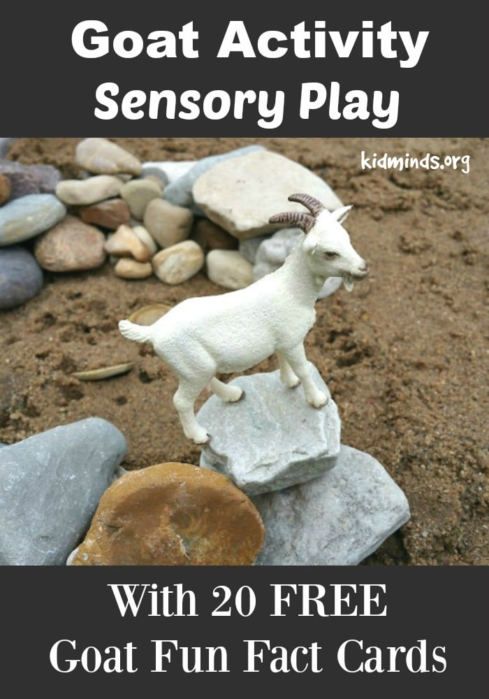 Goat Activity Sensory Play collage