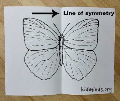 This Symmetry for Little Kids project is easy to set up, kids get a chance to create a simple reflection symmetry and you end up with a pretty piece of art.