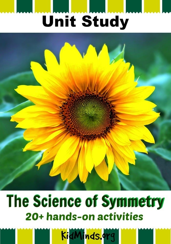 The Science of Symmetry Unit Study.  In this unit, we will look at different kind of symmetry in nature, architecture, art, music, science and math. We will explore what is symmetry and do 26 hands-on activities to master pattern recognition and have fun with symmetry.