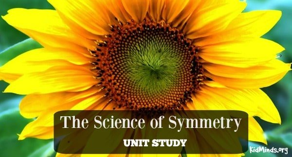 The Science of Symmetry Unit Study Collage for FB