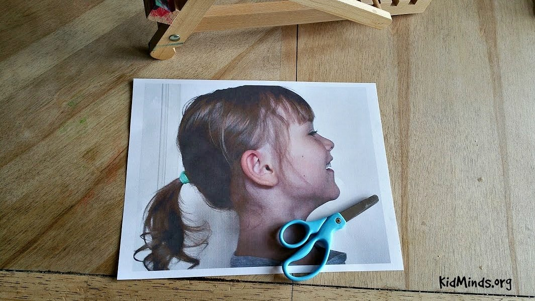 Acrylic Silhouette kids can make