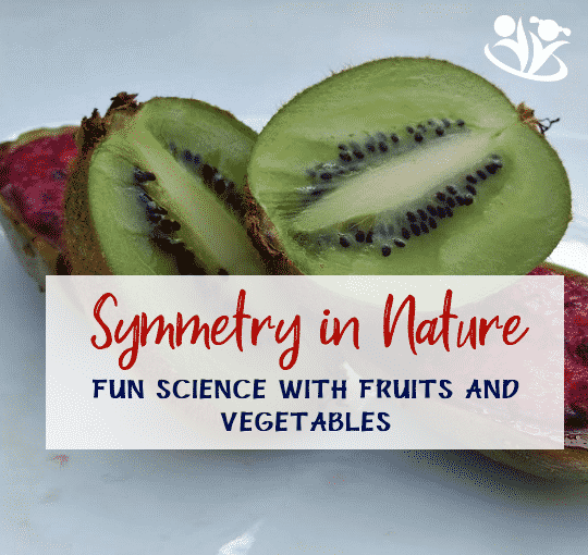 Fun Science with Fruits and Vegetables – Symmetry in Nature