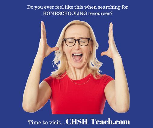 CHSH-Teach Review
