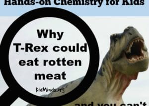Why T-Rex could eat rotten meat and you can't