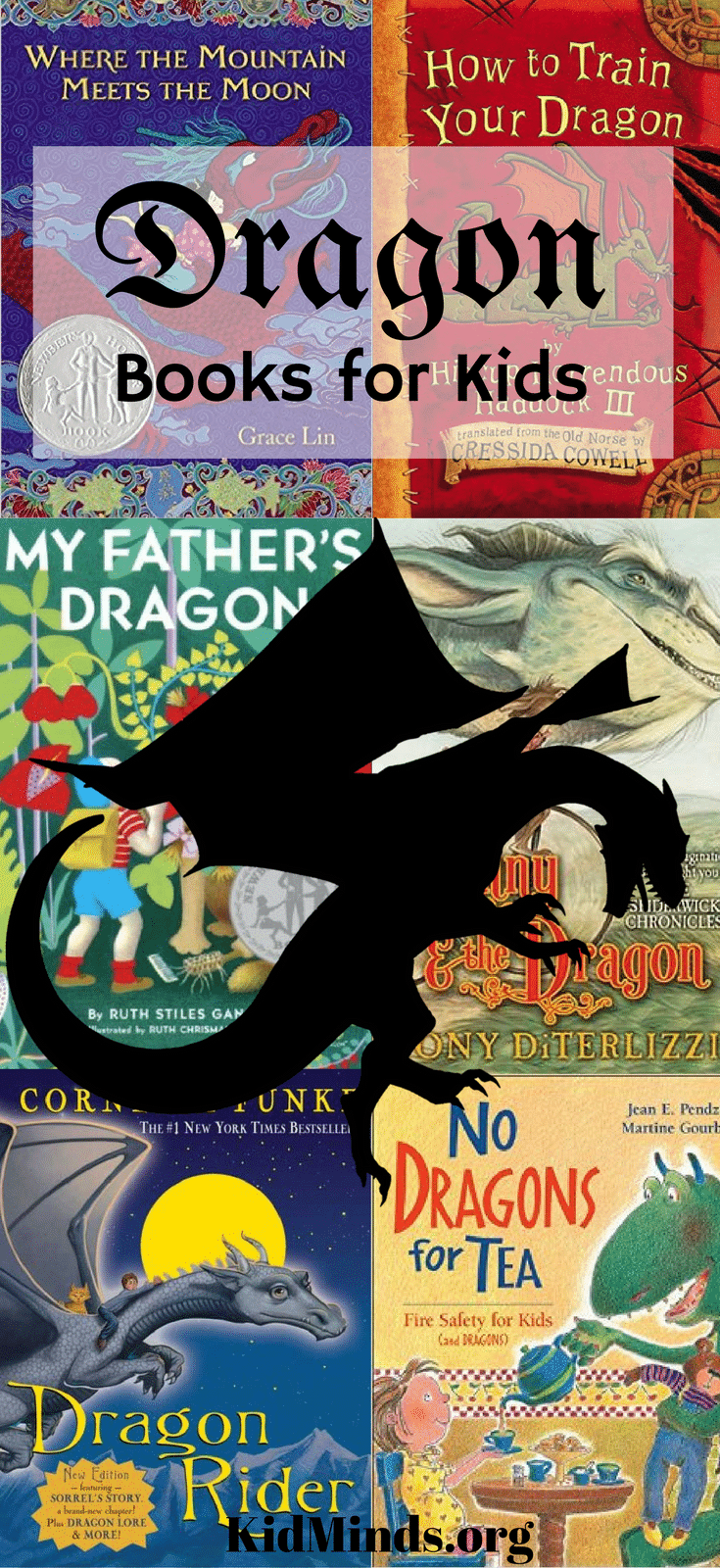 If you are looking for fabulous dragon books, check out our list.  We only included dragon books that are truly memorable!