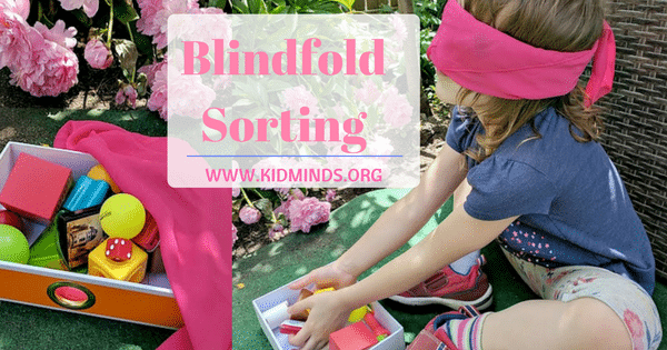 Blindfold Sorting