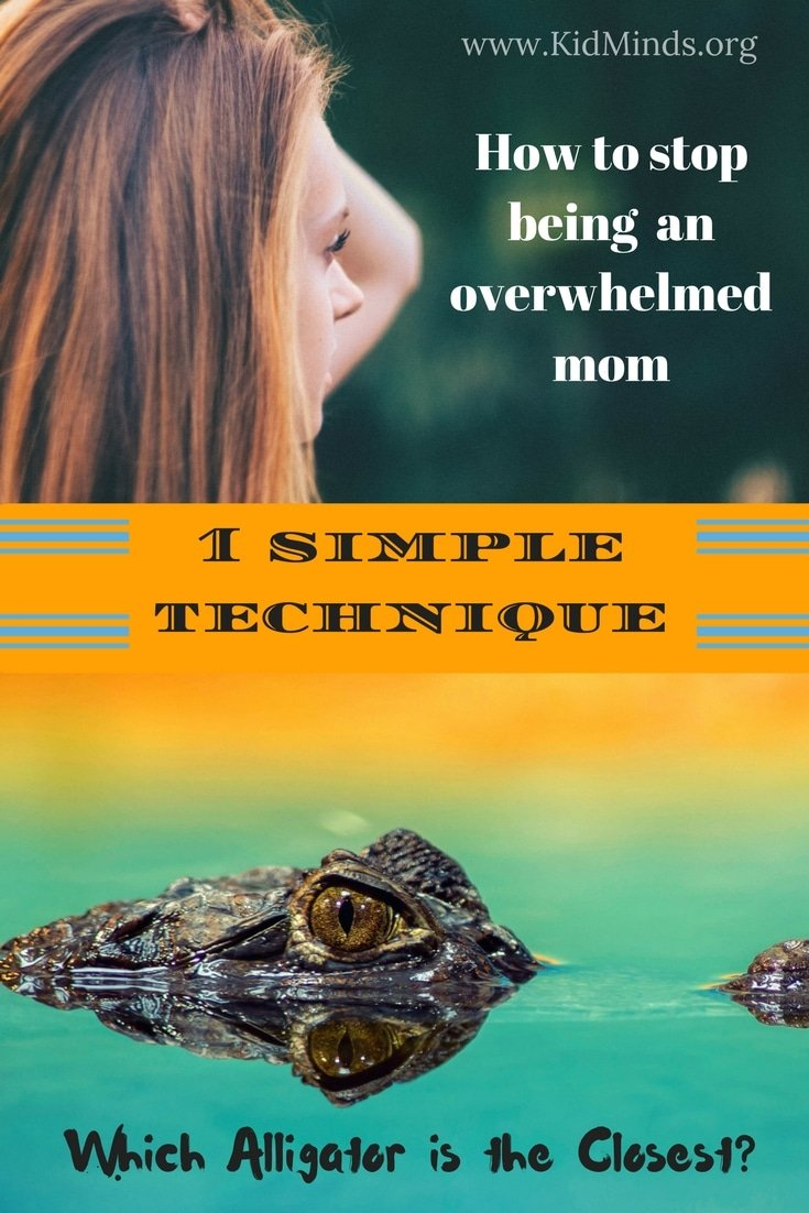 With one simple technique you can stop the overwhelm and feel calmer and more productive #mom #mindtools #parenting