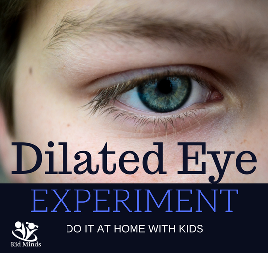 Pupil Dilation Experiment (to do at Home with Kids)