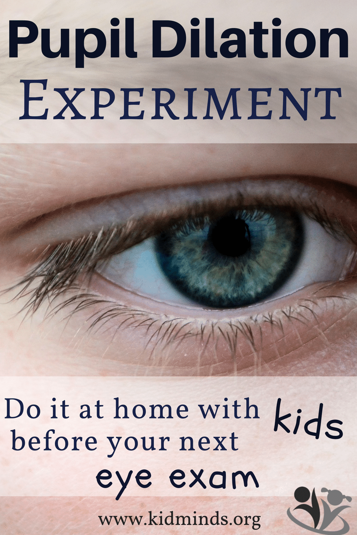 Pupil Dilation Experiment for Kids #science #humaneye #homeschooling #earlychildhoodeducation