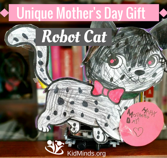 Unique Mother's Day Gift: Robot Cat (with video)