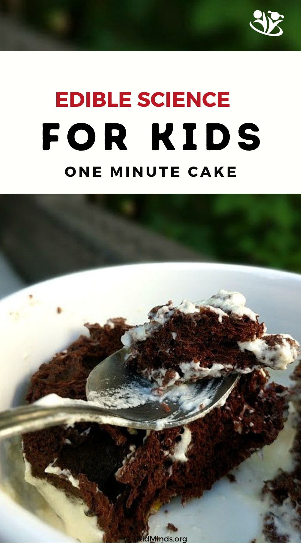 chocolate cake, one minute, three ingredients #desert #foodscience #kidsinthekitchen
