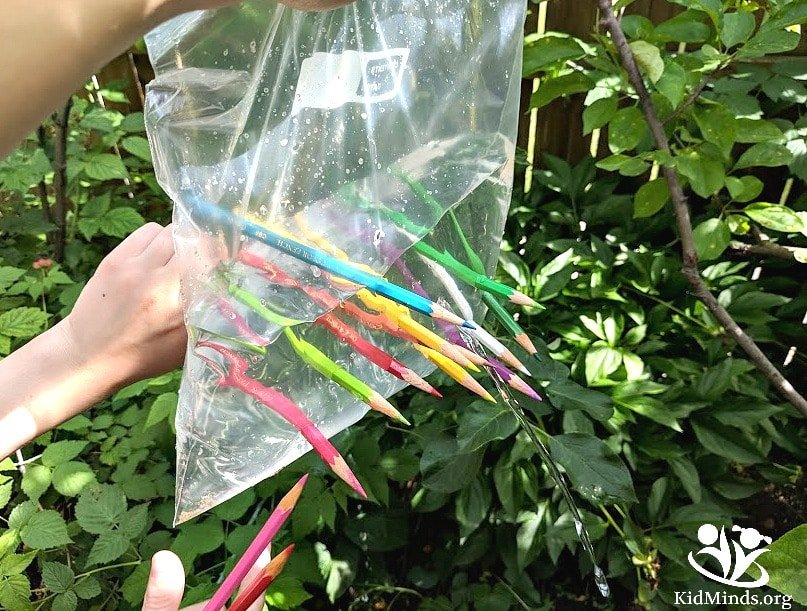 No prep science a bag of pencils. Introduction to atoms, molecules, polymers, and the alphabet of life. #science #summerfun