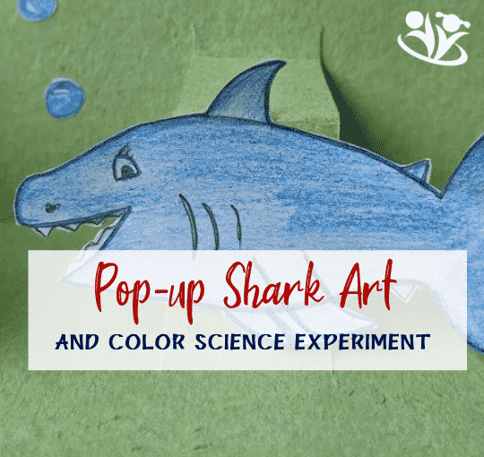Shark Art and Color Science Experiment