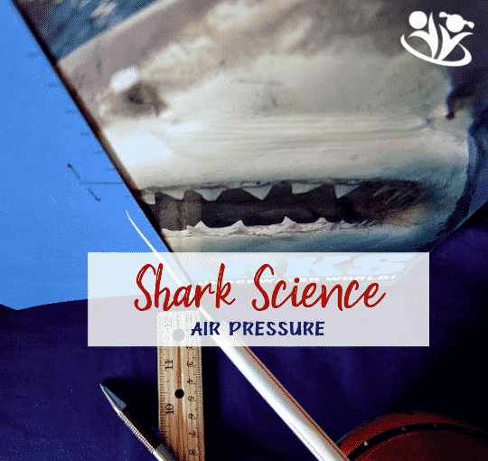 Shark science is fascinating. Not that long ago, scientists discovered that sharks have build-in barometers. They detect the drop in air pressure (and water pressure) and move to safety during violent weather. Today, we will make a homemade barometer and learn how sharks detect the approaching hurricane. #sharks #sharkscience #barometer #handsonlearning #learningallthetime #kids #formoms #boredombusters #funscience #homeschooling #learning #education #airpressure