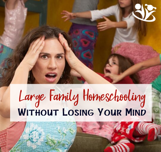 How to Manage Large Family Homeschooling Without Losing Your Mind