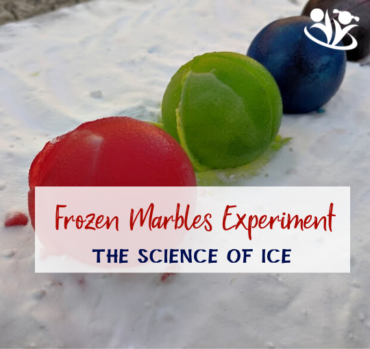 Frozen Marbles Experiment: What Surface Makes Ice Melt Faster