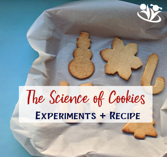 The Magical Science of Christmas Cookies (experiments + recipe)