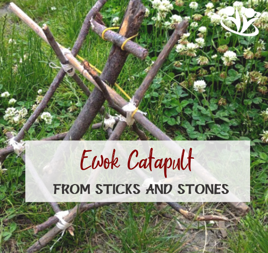Sticks and Stones Ewok Catapult (with Printables)