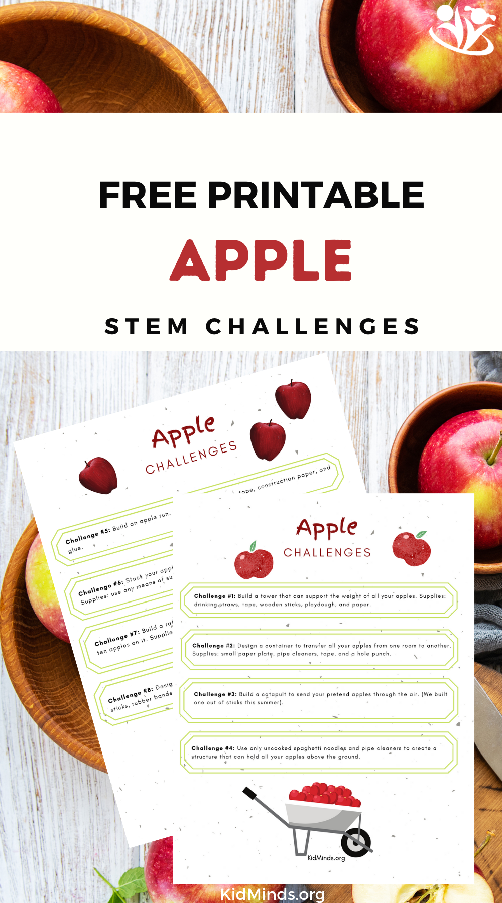 Do this simple activity after reading Dr. Seuss's Ten Apples Up On Top, and you'll turn storytime into a STEM lesson. #kidsactivities #DrSeuss #STEM #kidminds #handsonlearning #spring #TenApplesUpOnTop