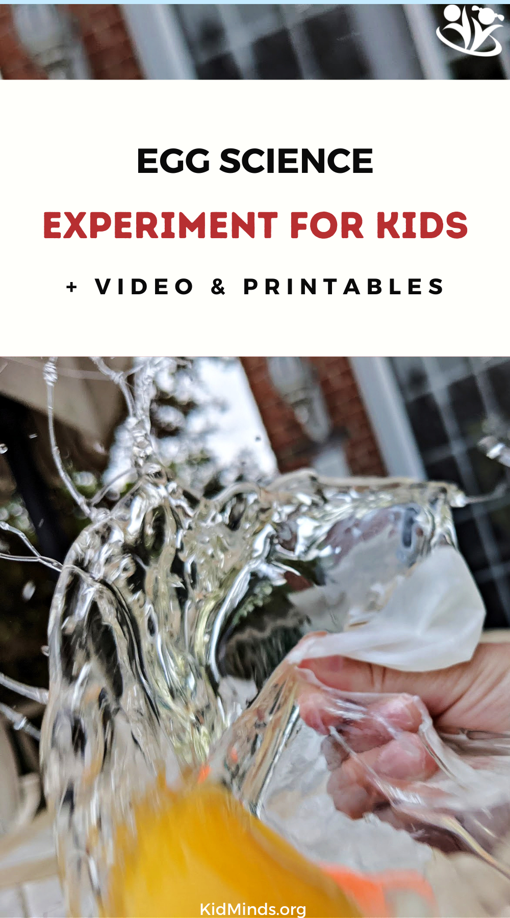 Whether you're looking for an easy #science activity, a spring-themed #experiment, some kitchen science, a hands-on #egg exploration, or a kid-friendly introduction to #chemistry, this one is for you!  #handsonlearning #kidsactivities #STEAM #calcium