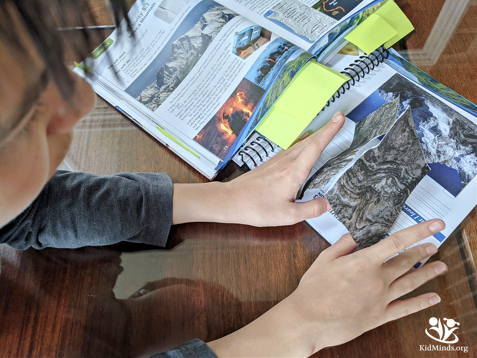 If you are looking for a well-rounded Earth Science curriculum written for homeschoolers, look no further. Apologia will take your kids on a discovery tour around our home planet Earth  #STEM #science #curriculum #Apologiascience