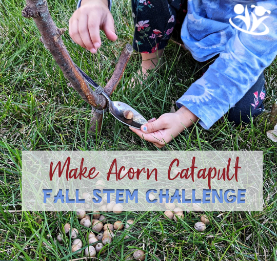 This acorn catapult is easy to make with things you already have handy - sticks, spoons, and hair ties. For an extra challenge, shoot at a target or download our Acorn Catapult Challenge printable. #STEM #science4kids #fall #kidsactivities #acorns